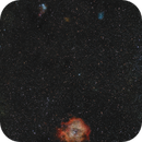 Widefield around NGC2244,                                Arno Rottal