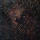 NGC 7000,                                Michael Kane