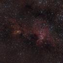 NGC 3576 La estatua de la Libertad,                                Sebastian Colombo