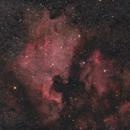 NGC 7000 & IC  5070,                                  Gabriel Siegl