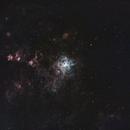 Tarantula Nebula narrowband,                                Wilson