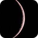 Young Moon,                                mlewis