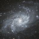 M33 Triangulum Galaxy,                                Michael