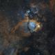 Fishhead Nebula,                                John Renaud