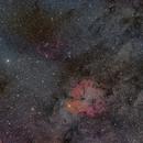 Bat & Elephant Nebula WideView,                                AstroJoeHSV
