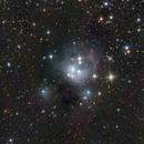 NGC7129,                                  Erik Guneriussen
