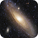 M31 - First Light with the ASI533MC-P,                                Randy Roy