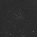 Starfish,                                allanv28