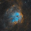 The Tadpole Nebula (IC 410), SHO,                                Ivan Maklyakov