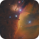 Horsehead For The Holidays,                                Terry Hancock