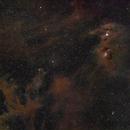 CED110/111, NGC3620, GN11.07.03 - Molekularcloud Widefield,                                Rolf Dietrich