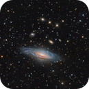 NGC 7331 - See Link and description,                                Paddy Gilliland