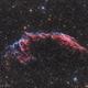 NGC 6995 Eastern Veil Nebula,                                Artūras Medvedevas