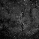 Elephant  Trunk Nebula,                                Don Curry