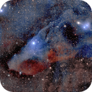 Blue Horsehead - IC4592 Four Panel Mosaic,                                  Jim Matzger