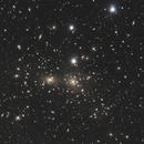 ACO 1656 - The Coma Galaxy Cluster,                                Martin Nischang