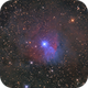 The Strawberry Nebula Sharpless 2-263/ VdB 38,                                Niko Geisriegler