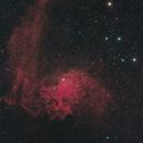Flaming Star,                                Konrad Krebs
