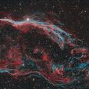 NGC 6960 The Western Veil Nebula,                                David Wills (Pixe...