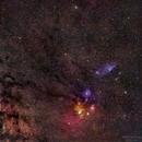 Rho Ophiuchi Region - Two Panel Mosaic,                                David McGarvey