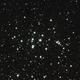 M44 Beehive Cluster,                                Dainius Urbanavicius