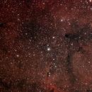 IC 1396 ELEPHANT'S TRUNK NEBULA,                                MarcoFavuzzi