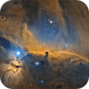 IC434 In SHO,                                Georges