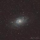 The Triangulum Galaxy, M33,                                raf2020