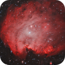 Monkey Head Nebula,                                Morris Yoder