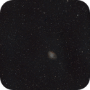 Nebulosa Granchio,                                Nicola Russo