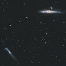 Whale and Crowbar Galaxies,                                Trevor Nicholls