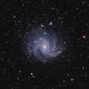 NGC 6946 - Fireworks Galaxy,                                Kurt Zeppetello