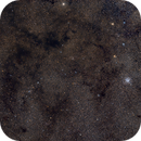 M11 and a lot of Barnard dark nebula,                                Riedl Rudolf