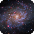 M33 with a lot of red flowers,                                Ray Liao