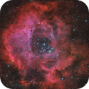 NGC2237 - Rosette Nebula - HaRGB,                                Dennis Sprinkle