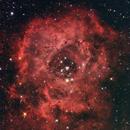Rosettennebel NGC 2237,                                sbothe