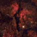 IC1318 Butterfly nebula,                                matthiasC