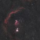 Orion (Wide Field),                                Cyril NOGER