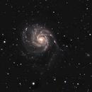 M101,                                Jeremy Seals