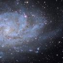Closeup of M33 from a combo Night RASA11 and CFF105,                                Dan Bartlett