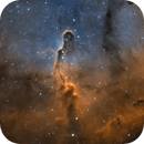 IC 1396,                                Mike H