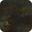 Cygnus - North America Nebula,                                Georg G Albrecht