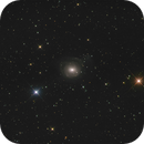 NGC 2655 in Camelopardalis,                                Etienne