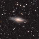 NGC 7331 LHaRGB,                                Ron Stanley