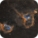 The Soul, the Heart and the Fish Nebula,                                pmneo