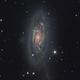 NGC 6015 rare gem in Draco,                                Ian Gorin