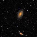 NGC 3031 & NGC 3034  RGBHaOIII (OSC),                                Randy Roy
