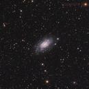 NGC 2403,                                Jens Zippel