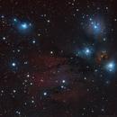 NGC 2170,                                Gary Imm