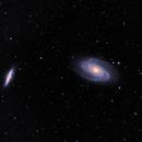 Bode's Nebula,                                Greg T.